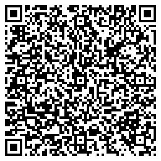 QR-код с контактной информацией организации ООО СИБИРСКИЙ ЛЕС