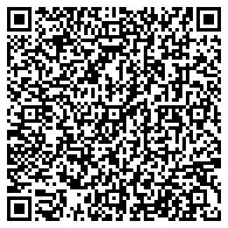 QR-код с контактной информацией организации МАГАЗИН № 172