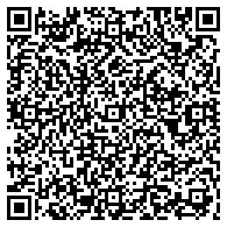 QR-код с контактной информацией организации ШАВШИН ЧП