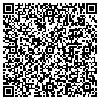 QR-код с контактной информацией организации ШЕМЕТОВ В. И. ЧП