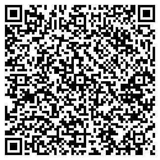 QR-код с контактной информацией организации ИВИС-TRAVEL ООО