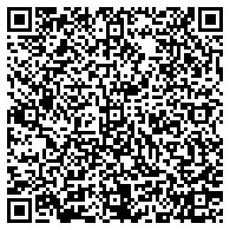 QR-код с контактной информацией организации ДОМОВОЙ МАГАЗИН