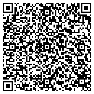 QR-код с контактной информацией организации BIG FISH