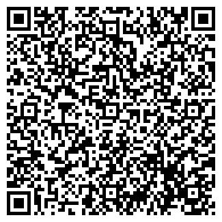 QR-код с контактной информацией организации РОМАХОВ ЧП