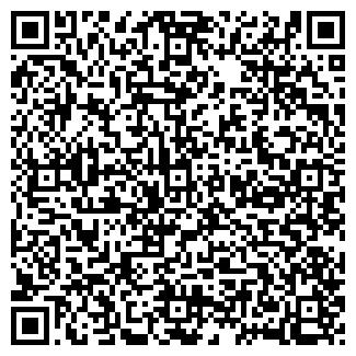QR-код с контактной информацией организации ДЕТСКИЙ САД №79
