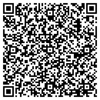 QR-код с контактной информацией организации ABC DOM