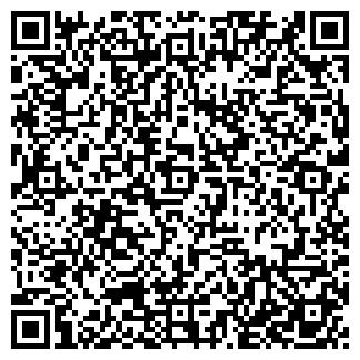 QR-код с контактной информацией организации ВИЛИЯ ООО