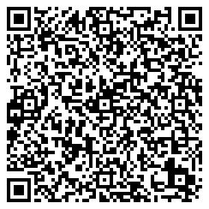 QR-код с контактной информацией организации BABYMAG-ONLINE