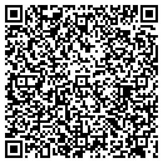 QR-код с контактной информацией организации ALFA WEB