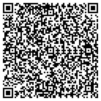 """QR-код с контактной информацией организации """"MSV"""""""