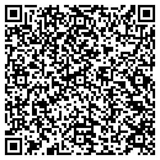 QR-код с контактной информацией организации ALTEREGO