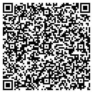 QR-код с контактной информацией организации ЭЛФИС, ООО