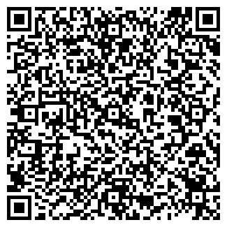 QR-код с контактной информацией организации МАГЕЛЬ
