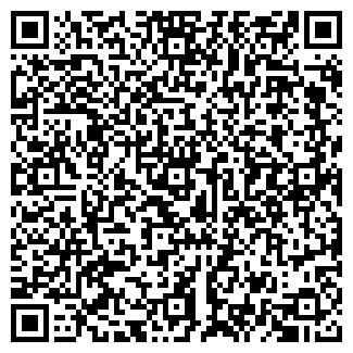 QR-код с контактной информацией организации БАГЫШКОВО
