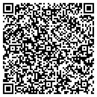 QR-код с контактной информацией организации ИП ГАЗИЗОВ Р.В.