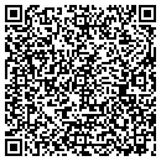 QR-код с контактной информацией организации ТАКСИ БЛИЦ