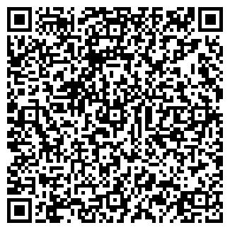 QR-код с контактной информацией организации ВЕМУС, ООО