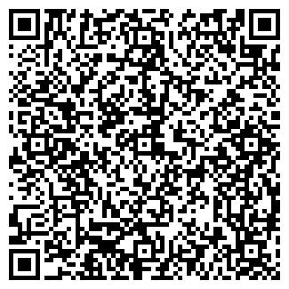 QR-код с контактной информацией организации РОСХИМАВТО ООО