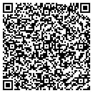 QR-код с контактной информацией организации ДОЛГИХ, ИП