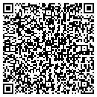 QR-код с контактной информацией организации ВИЛМИР, Частное научно-производственное унитарное предприятие