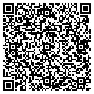 QR-код с контактной информацией организации ДЛВ
