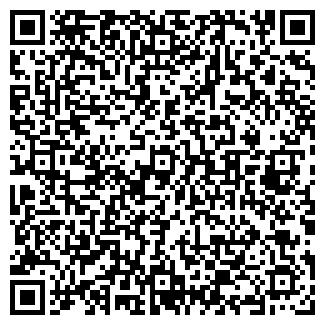 QR-код с контактной информацией организации СПИЦИН Ю. В., ИП