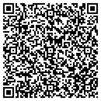 QR-код с контактной информацией организации ТЕЛМИКО ООО