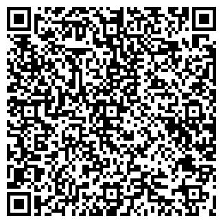 QR-код с контактной информацией организации ШУМИХА