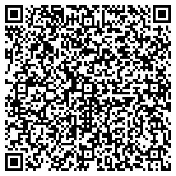 QR-код с контактной информацией организации ДЕТСКИЙ САД 'РОДНИЧОК'
