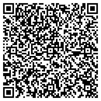QR-код с контактной информацией организации ЧЕМЕРОВ, ИП