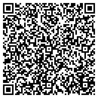 QR-код с контактной информацией организации ЧИП И ДИП