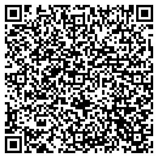 QR-код с контактной информацией организации ЭЛИУМ, ООО