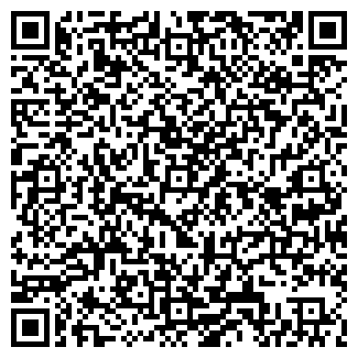 QR-код с контактной информацией организации ПЛАНЕТА АВТО, ИП