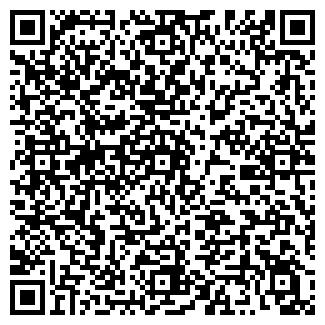 QR-код с контактной информацией организации НАБИС ООО