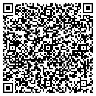 QR-код с контактной информацией организации СИБИРЬ ИЦ ЗАО