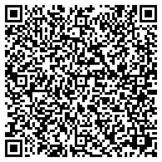 QR-код с контактной информацией организации ИГОЛКИН П.Н.