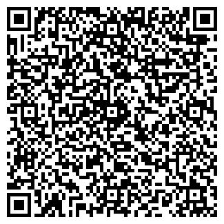 QR-код с контактной информацией организации ВАВИЛОН ПЛЮС