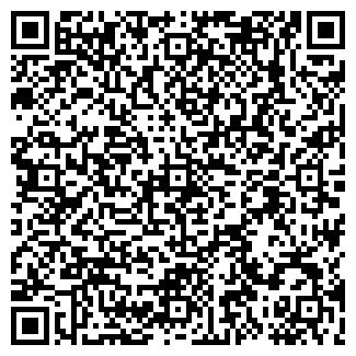 QR-код с контактной информацией организации № 13 ОГОНЕК