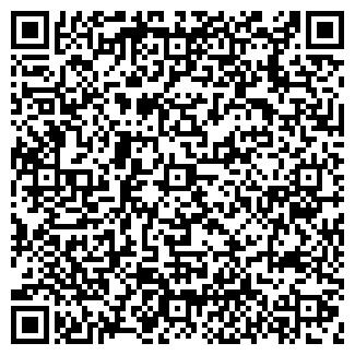 QR-код с контактной информацией организации СОЗИДАТЕЛЬ ООО
