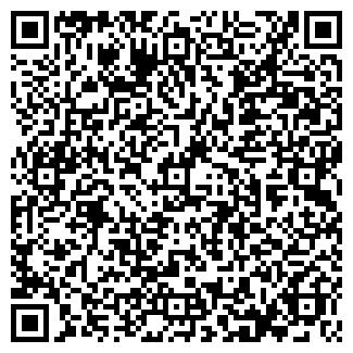 QR-код с контактной информацией организации БЛИЦ АУДИТ ООО