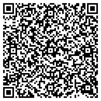 QR-код с контактной информацией организации BLUESKY