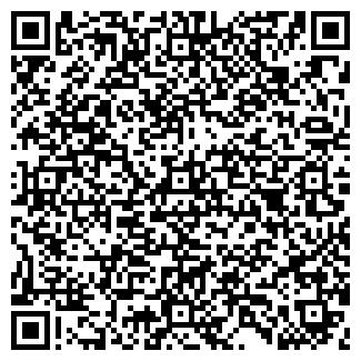 QR-код с контактной информацией организации АЛЬФА ООО
