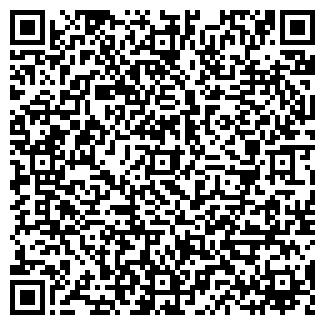 QR-код с контактной информацией организации ДИОНИС ОДО