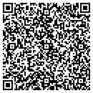 QR-код с контактной информацией организации ДОМЕСТИК ОДО
