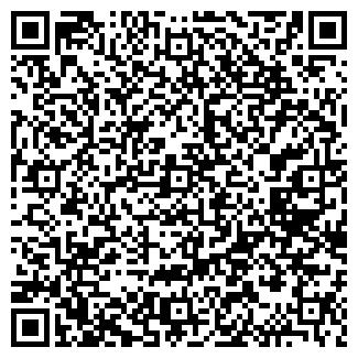 QR-код с контактной информацией организации РСУ ВИЛЕЙСКОЕ