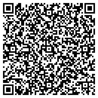 QR-код с контактной информацией организации РОМАШКА ООО
