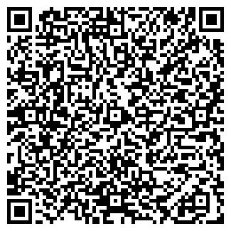 QR-код с контактной информацией организации ЭЛВИНЕС ИП