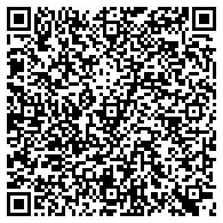 QR-код с контактной информацией организации VIP, ООО