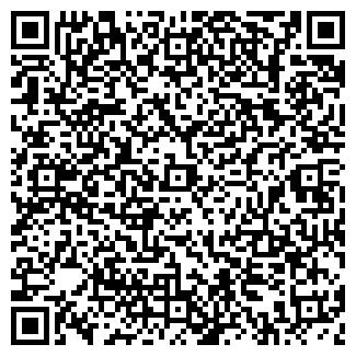 QR-код с контактной информацией организации ВЛАД МТ, ООО