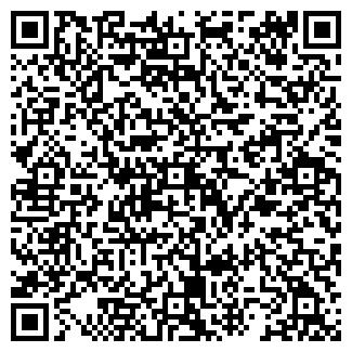 QR-код с контактной информацией организации ВЭМЗ ТД, ЗАО